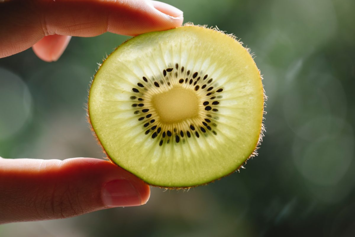 Close up photo of a kiwi between someones fingers. Eating kiwi can improve sleep quality